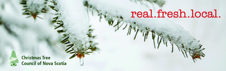 Christmas Tree Producers Part - 31: Christmas Tree Council Of Nova Scotia U2013 Real.fresh.local.